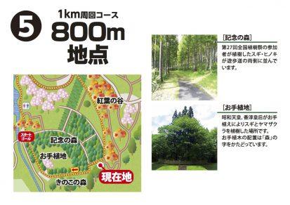 憩いの森詳細図5