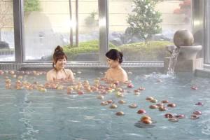 ワンデープランりんご風呂
