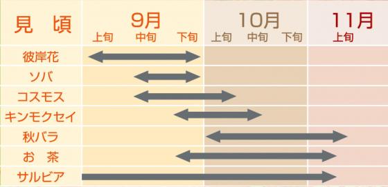 花暦カレンダー