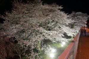 平成27年4月4日撮影