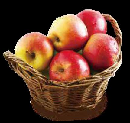 りんごイメージ2