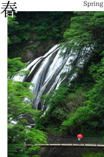 袋田の滝_春