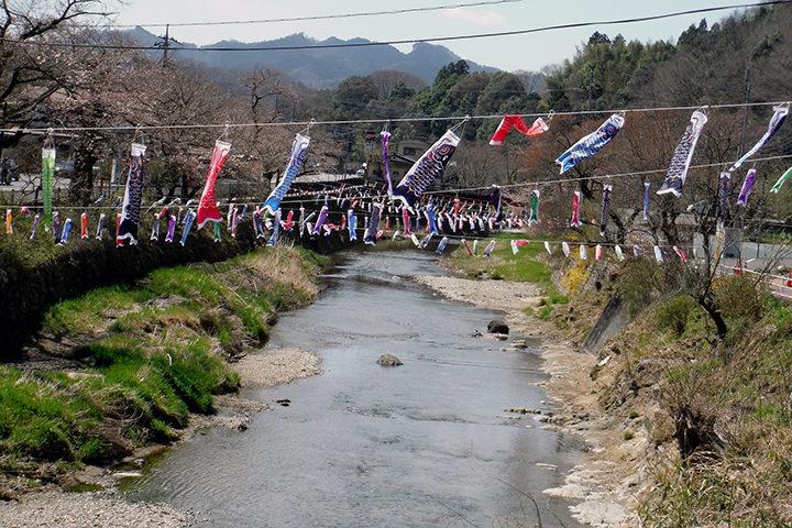 袋田の滝アユと鯉のぼり