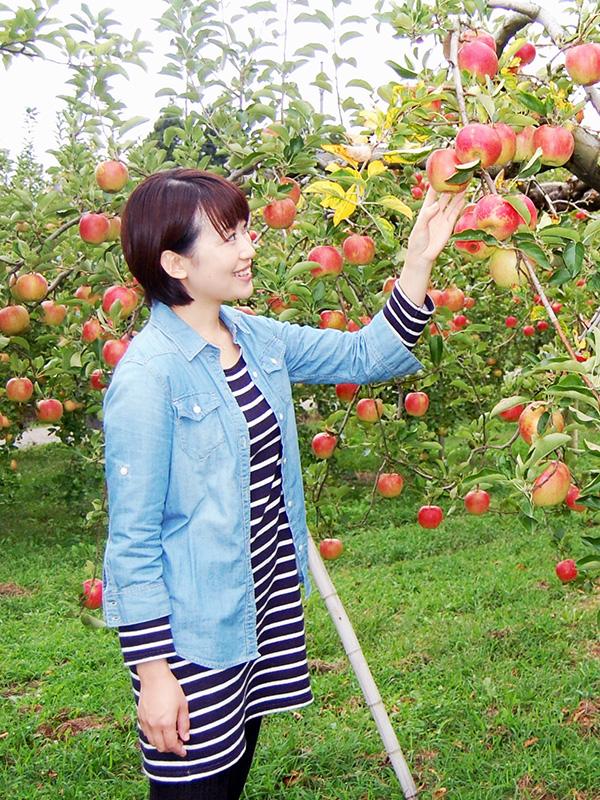りんご狩りイメージ